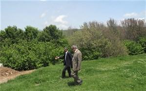 بازدید مدیرکل آموزش و پرورش اردبیل از اردوگاه فرهنگی و تربیتی بعثت نمین