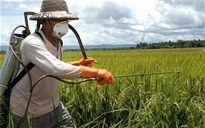اختصاص 710 میلیارد ریال یارانه به تسهیلات کشاورزی چهارمحال و بختیاری