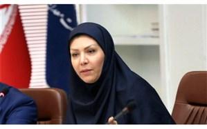 مدیرعامل صندوق ضمانت صادرات: صندوق ضمانت صادرات نبود السی را برای صادرکنندگان فولاد حل میکند