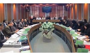 فولادوند: پایه کیفیت آموزشی در مدارس شهر تهران، ساماندهی است
