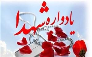 یادواره شهدای روستای طزرجان شهرستان تفت برگزار شد