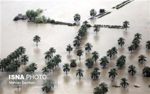 تخلیه سیلاب 76 درصد اراضی کشاورزی سیل زده خوزستان