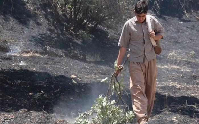 آتش سوزی جنگلهای ایلام