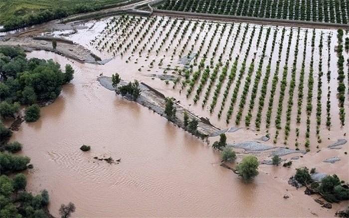 خسارت سیل به کشاورزی