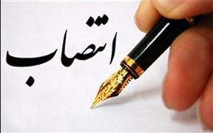 اصلانی شاهسوار سرپرست معاونت سوادآموزی آموزش و پرورش شهرستانهای تهران شد