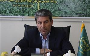 ۳۵ درصد از اشتغال آذربایجان غربی مربوط به بخش کشاورزی است