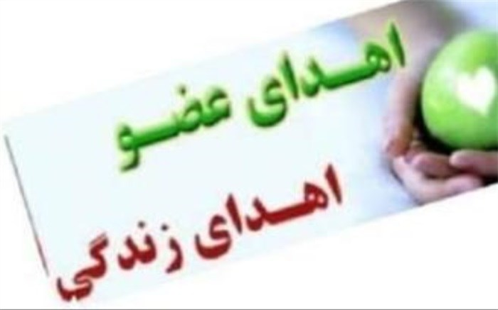 زندگی دوباره سه هموطن با چهارمین ایثار ماندگار استان بوشهر در سال