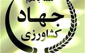 از5طرح جهادکشاورزی درشهرستان نهبندان  بهرهبرداری شد