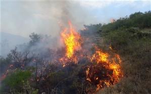 ۲ هکتار از مراتع گلوسنگ کلیبر در آتش سوخت