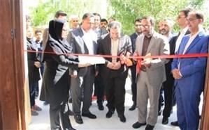 افتتاح سیصد و نودمین مرکز یادگیری محلی کشور در پارک سلامت روان شیراز