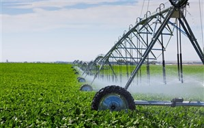 اصلاح الگوی کشت به کاهش ۶۵ درصدی مصرف آب سد حسنلو منجر شد