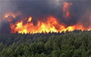 شناسایی عامل آتشسوزی عرصههای منابع طبیعی شهرستان کازرون
