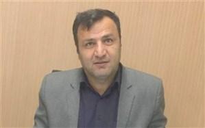 بیش از ۶ هزار دانش آموز اتباع خارجی در استان بوشهر تحصیل میکنند