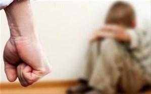 اظهارات مدیرکل بهزیستی بوشهر درباره کودکآزاری در کارواش