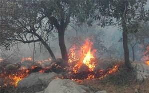 آتشسوزی در جنگل هم جرم است و هم مجازات نقدی و حبس دارد