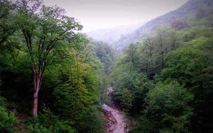 ثبت جهانی جنگلهای هیرکانی