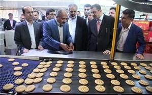 بازدید استاندار و هیات تجاری سلیمانیه از واحدهای تولیدی کردستان