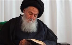 آیتالله سید محمد حسینی شاهرودی درگذشت