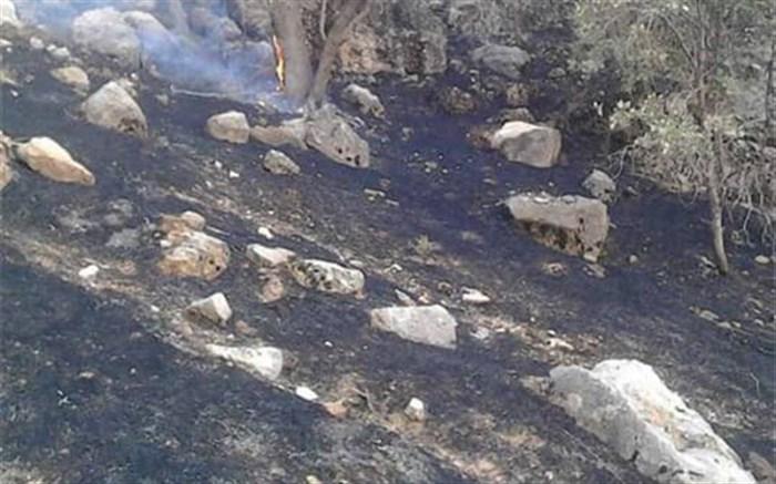 آتش در ارتفاعات صعب العبور «مارین» گچساران کنترل شده است