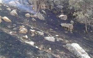 آتش در ارتفاعات صعب العبور «مارین» گچساران کنترل شده است +عکس