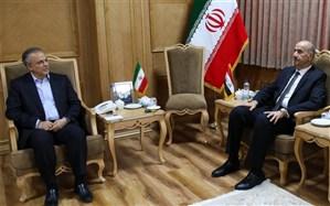 آمادگی برای تاسیس شرکت مشترک ایرانی-عراقی باهدف ساماندهی گردشگری زیارت
