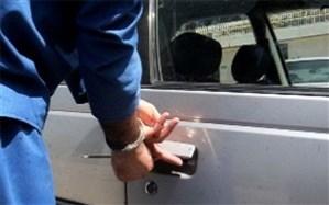 79 فقره سرقت قطعات خودرو در مهریز کشف شد