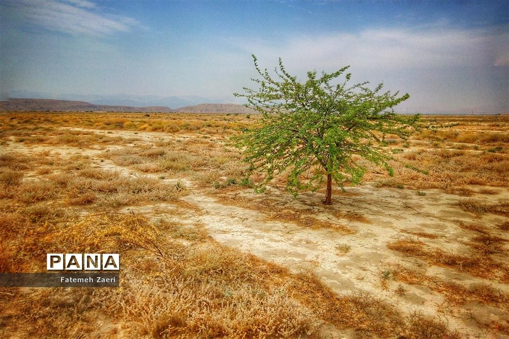 اقلیم خشک و خشن لامرد فارس