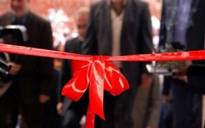 نمایشگاه مهارت، اشتغال و تولید ملی در بیرجند افتتاح شد