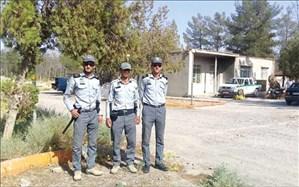 با قطع درختان 40 ساله و آتش زدن چند ده درخت در تربت جام پرونده قضایی تشکیل شد