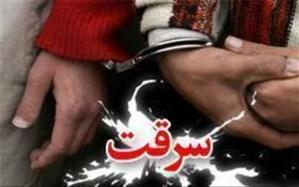سارقی که برای سی و یکمین بار دستگیر شد!