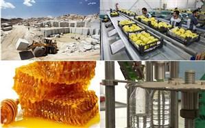 ۱۰ خوشه جدید صنعتی در آذربایجانغربی شناسایی شد