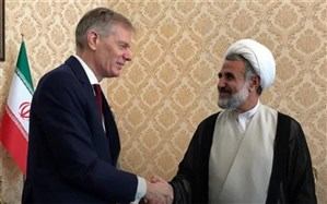 دیدار رئیس کمیسیون امنیت ملی و سفیر بریتانیا در ایران