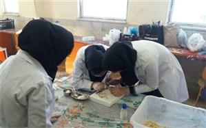 شیوهنامه برگزاری اولین جشنواره علمی پژوهشی پژوهشسراهای دانشآموزی ابلاغ شد