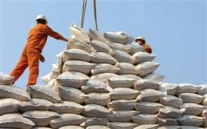 قبادی: توزیع برنج وارداتی تا پایان فصل برداشت ممنوع است