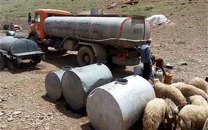 مدیرکل امور عشایر کهگیلویه و بویراحمد: برخی مناطق عشایری استان هنوز مشکل آب آشامیدنی دارند