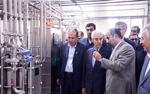 واحد فرآوری شیر و محصولات لبنی دانشگاه تبریز با حضور وزیر علوم  به بهرهبرداری رسید