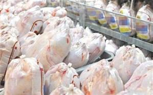 عوارض صادراتی هر کیلوگرم گوشت مرغ پنج هزار تومان تعیین شد