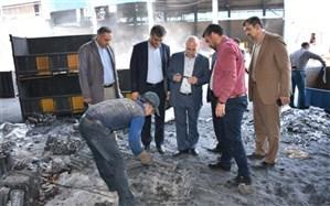 بازدید مدیر عامل توزیع برق استان تهران از کارخانجات صنعتی پاکدشت