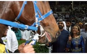 حاکم دبی اسبهایش را بر دخترانش ترجیح میدهد!