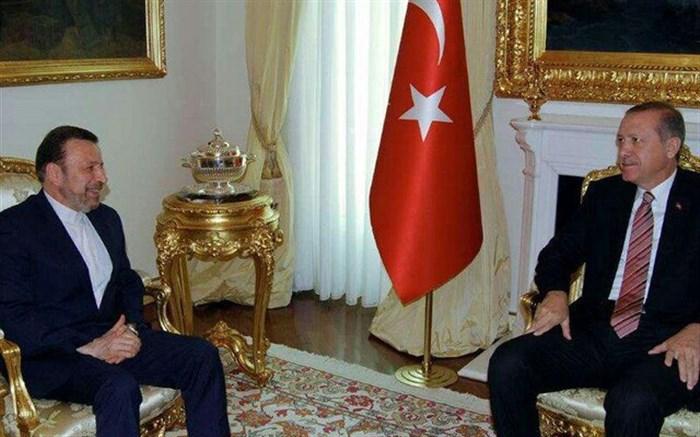 واعظی با رئیسجمهور ترکیه دیدار کرد