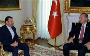 واعظی با اردوغان دیدار کرد