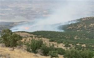 آتشسوزی جنگلهای سردشت مهار شد