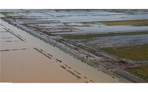 خسارت سیل به ۵۰ هکتار از اراضی کشاورزی خوی