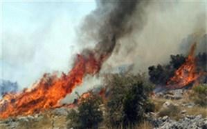 مهار آتش در ارتفاعات صعب العبور سپیدان