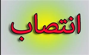 انتصاب  محمد مهدی محسنی به عنوان سرپرست آموزش و پرورش شهرستان دیلم