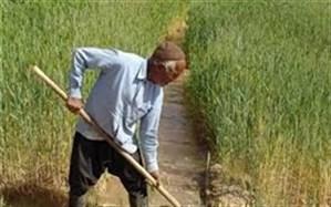 غلامرضا قوسی خبر داد: ابلاغ 170 میلیارد تومان تسهیلات بانکی یارانهدار به بخش کشاورزی خراسانجنوبی