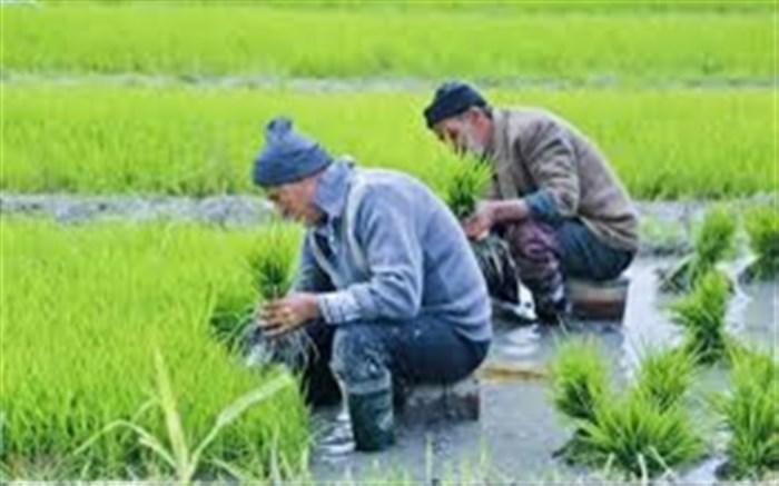 زیرساخت های کشاورزی