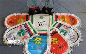 کسب 6 پرچم  افتخار و 2تندیس اردویی در اردوی ملی پیشتازان توسط دانش آموزان اردبیلی