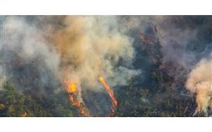 آتش سوزی جنگل های ارسباران به طور کامل مهار شد