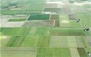 طرح کاداستر در سطح ۷۵۰۰۰هکتار از اراضی کشاورزی شهرستان بویین زهرا اجرا شد